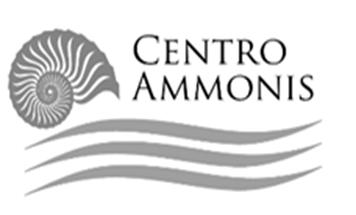 Logo_Ammonis_grey
